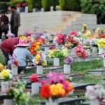Thuê xe đi tảo mộ nghĩa trang Yên Kỳ